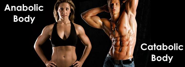 Anabolic & Catabolic – What is Difference?