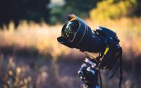 Worldwide Network of Photographers