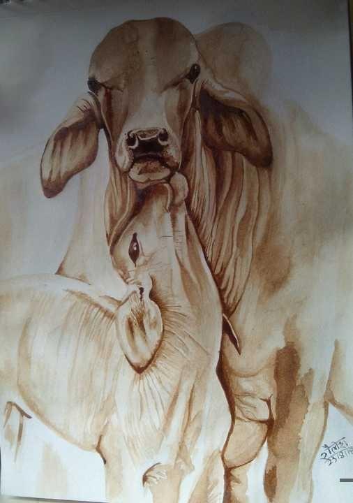 Shailesh Thakur's Gallery
